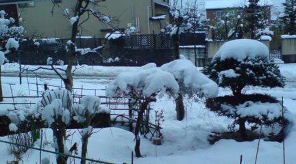 久々の大晦日雪
