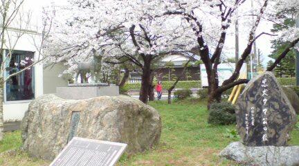 忠犬タマ公とさくらんど村松公園