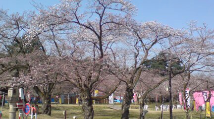 桜藩(さくらンド)村松公園