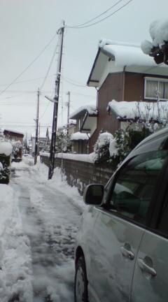午前から雪かき