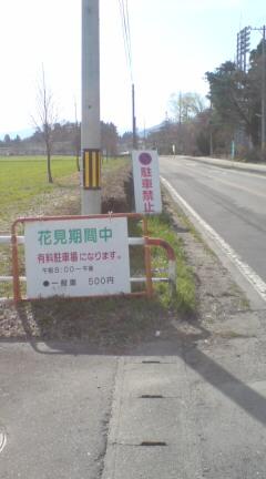 朝チャリ桜藩さくらんど村松公園