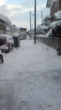 雪のけ終了